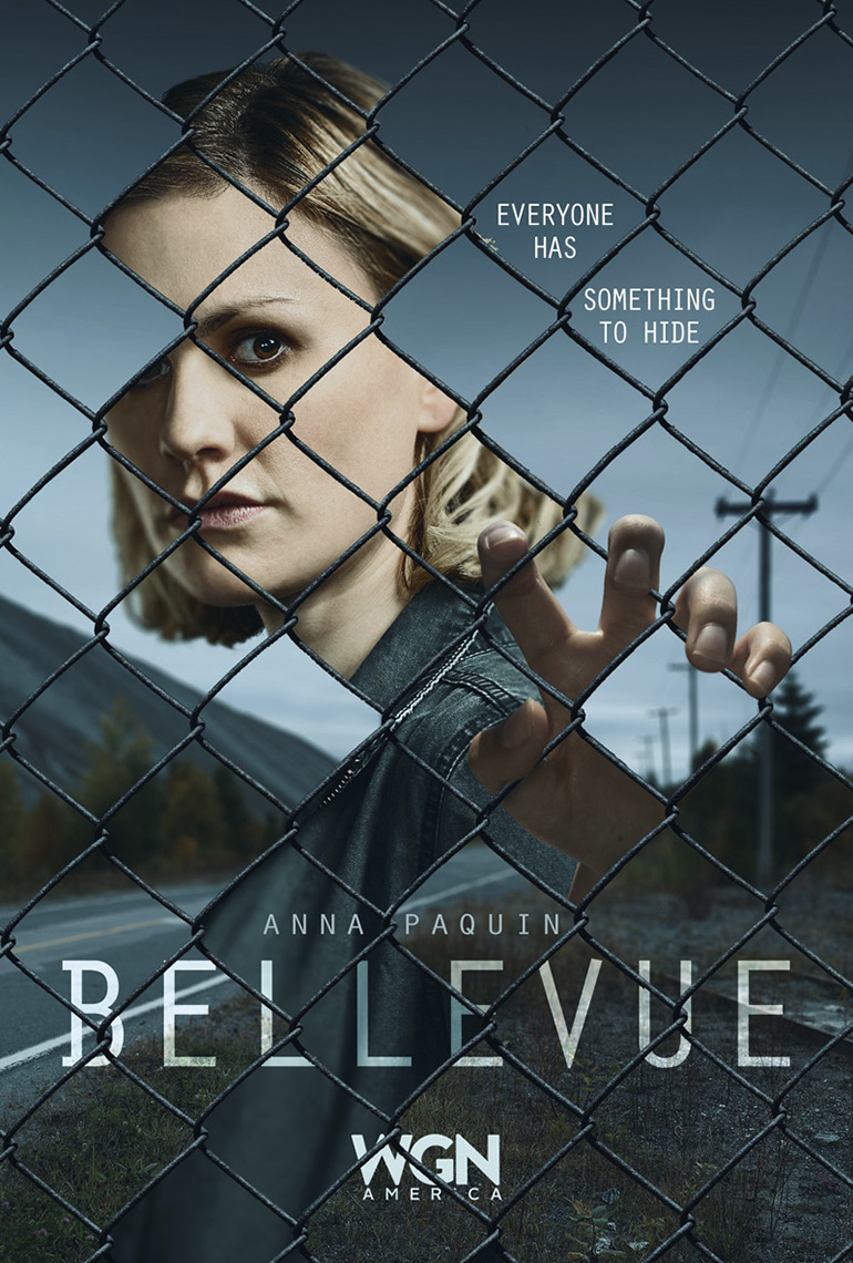 bellevue_chain-link